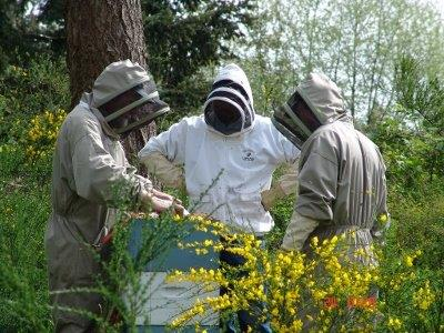 beekeepers at Flying Dutchman checking hives